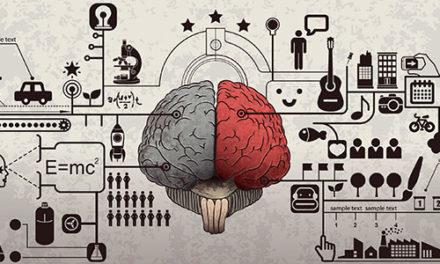 Fatos sobre o nosso cérebro/aprendizagem que você precisa saber
